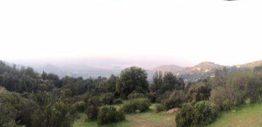 Aculeo, Paine
